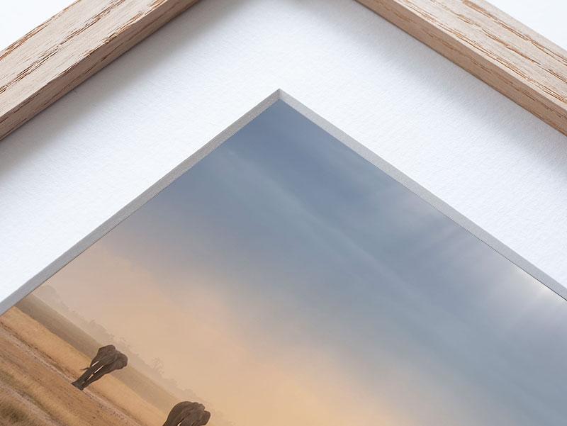 Matt border quality frame framing frames framefox