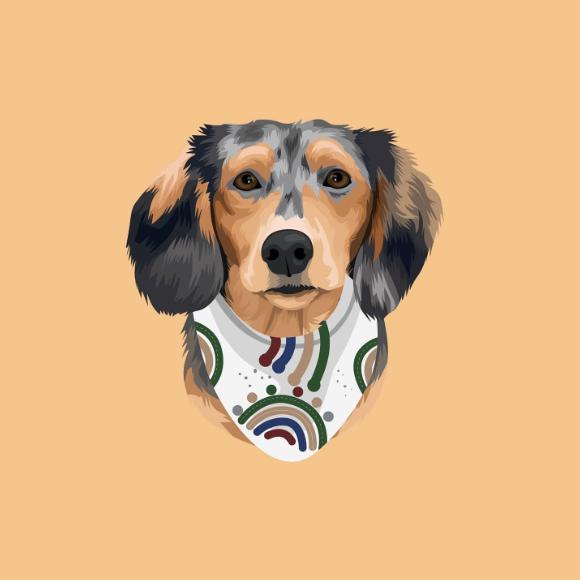 frame illustration trends pet portrait