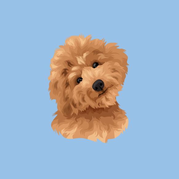 frame trends pet dog portrait