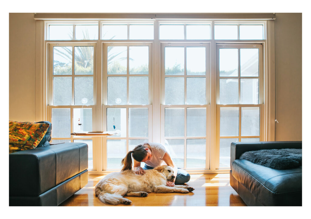 Pet photography do and don't guide blog